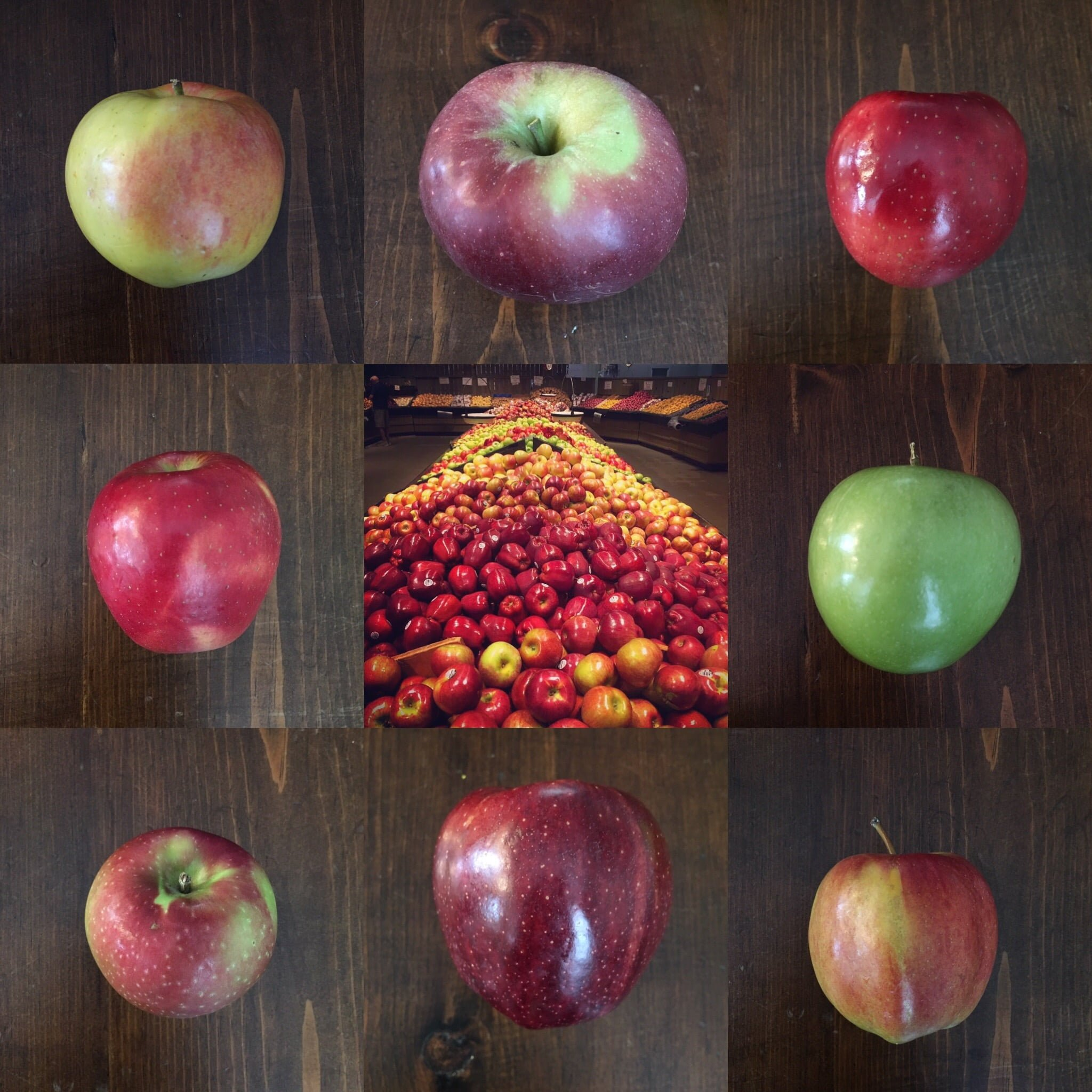 Delicious Orchards » All Things Apple